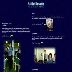 Attila Kovacs - festmusiker