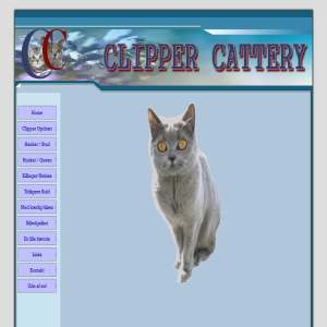 Clipper Cattery