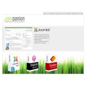 Companion Internet Solutions
