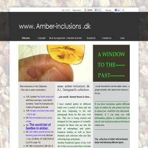 Amber-inclusions.dk