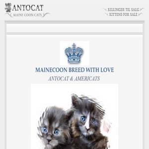 AntoCat