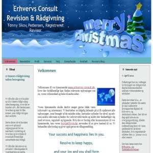 Erhvervs Consult Revision & Rådgivning