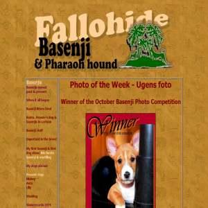 Fallohide - Basenji & Pharaoh Hound