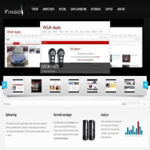 Fingo Web Hosting