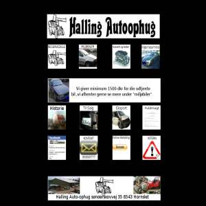 Halling autoophug