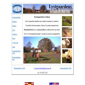 Bondegårdsferie - Lystgaardens islandske heste