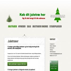 Mit juletræ