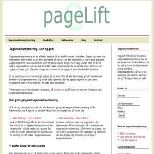Pagelift.dk - Søgemaskineoptimering