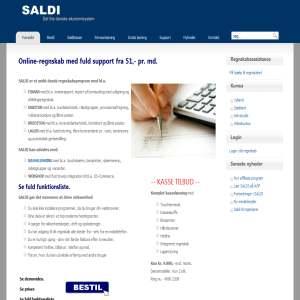 SALDI - online regnskab