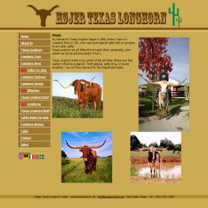 Højer Texas Longhorn