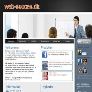 Web-succes